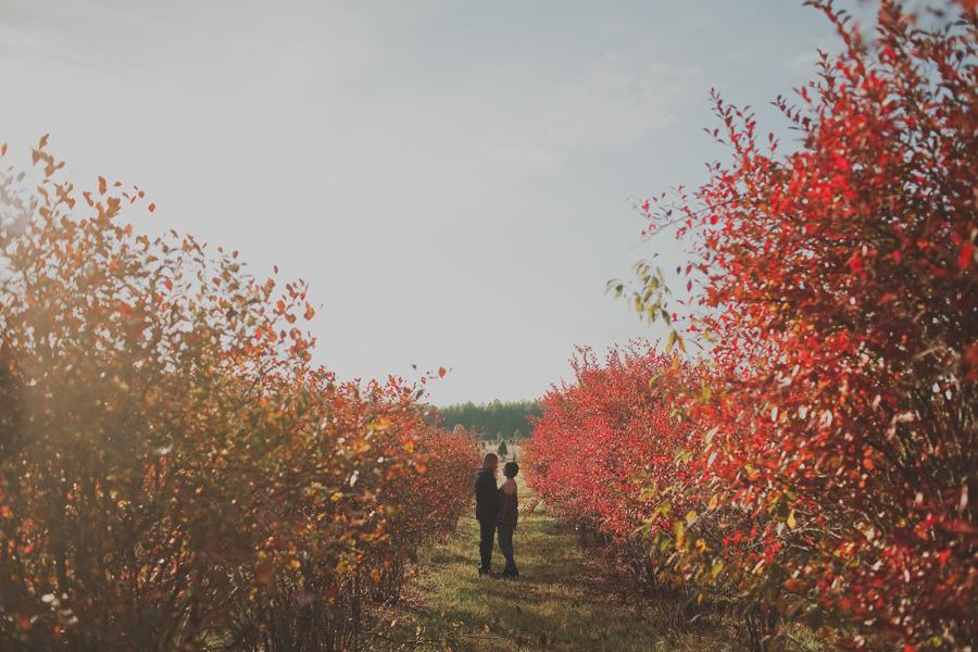 christmas-tree-farm-engagement-04