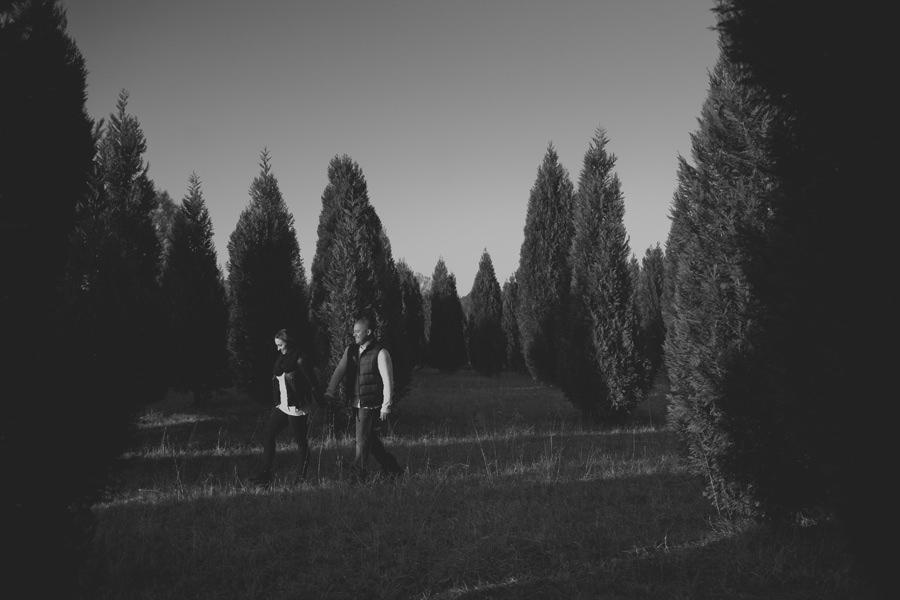 christmas-tree-farm-engagement-13