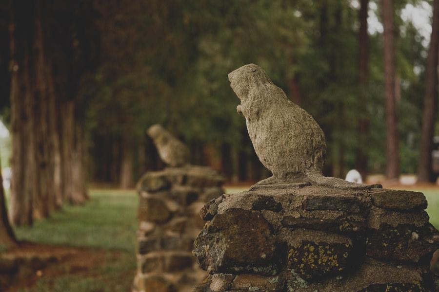 beaver-dam-wedding-005