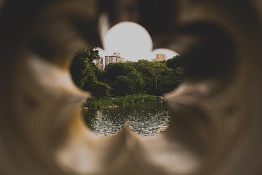 central-park-engagement-4 0