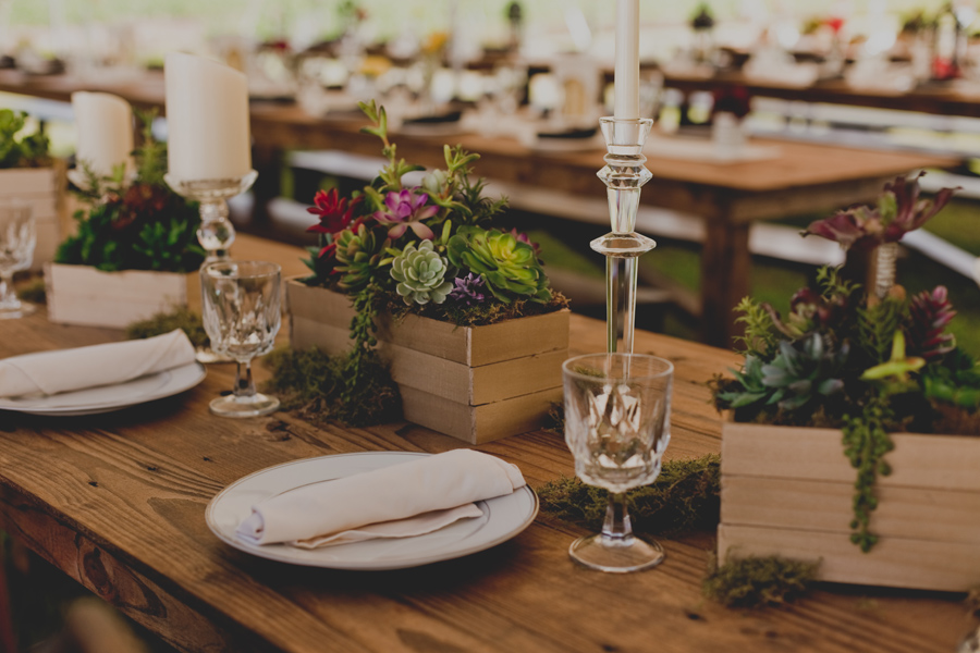 locust-nc-wedding-44